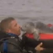 Fined for Saving A Baby Seal!