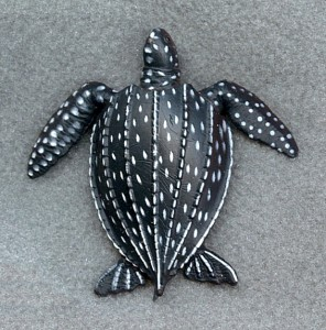 Leatherback Sea Turtles may become Extinct in next 20 Years